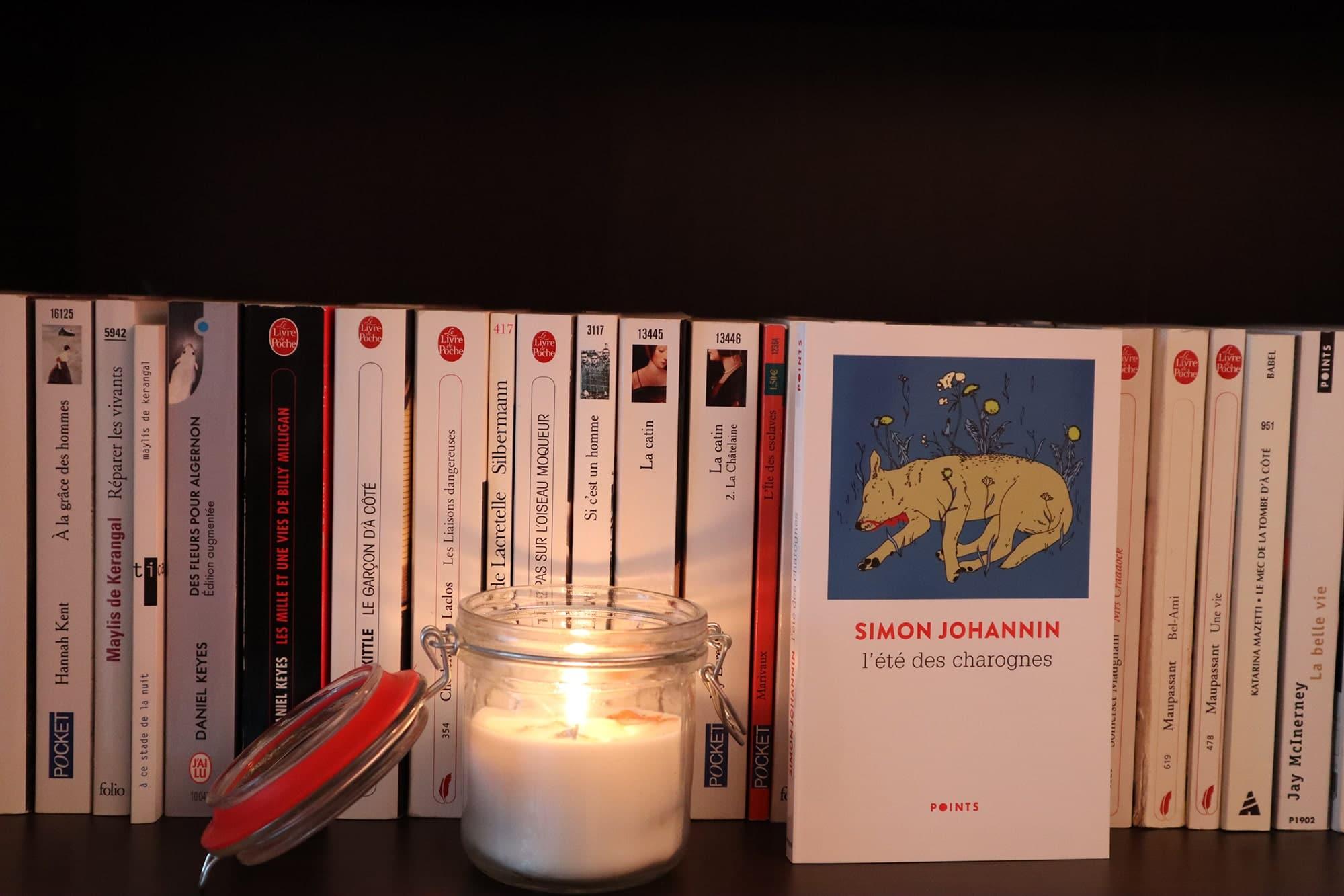 L'été des charognes, Simon Johannin – Ed. Points, 158 p.